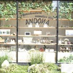 andona縺ゅ◆繧・_DSC4304